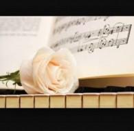 Bella Rose Singer and Pianist