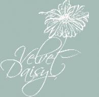 The Velvet Daisy